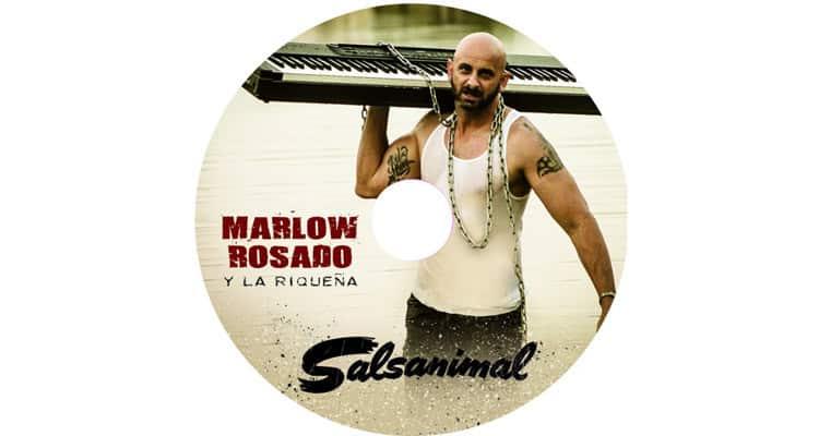 SALSANIMAL_Single