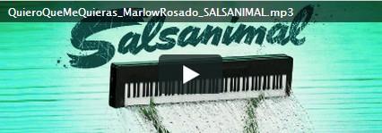 salsanimal
