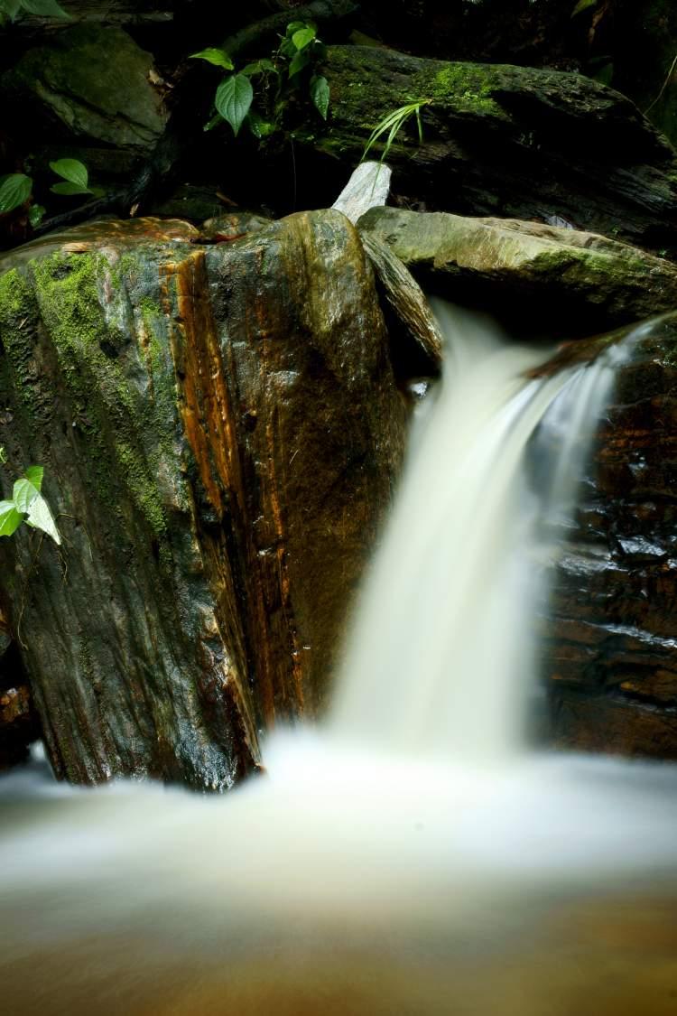 Edith Falls, Trinidad & Tobago