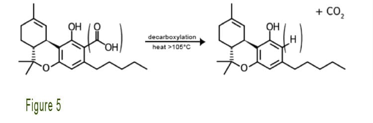 Decarboxylation_Reaction