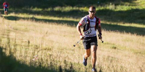 Ultra trail marathon, runners on forest trail. Sport, running outdoor