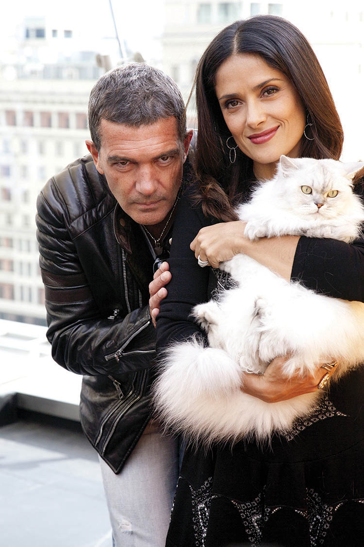 "Antonio Banderas and Salma Hayek arriving at the ""Puss In Boots"""