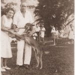 Great family friends Daphne and Percy Agar on La Haut lawn with Perryman, Honychurch, Gale and Frampton kids behind.
