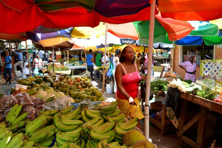 Tropical Market in Castries, Santa Lucia. Agricultural markets are the leading supplier of food in Santa Lucia. Photo: Styve Reineck